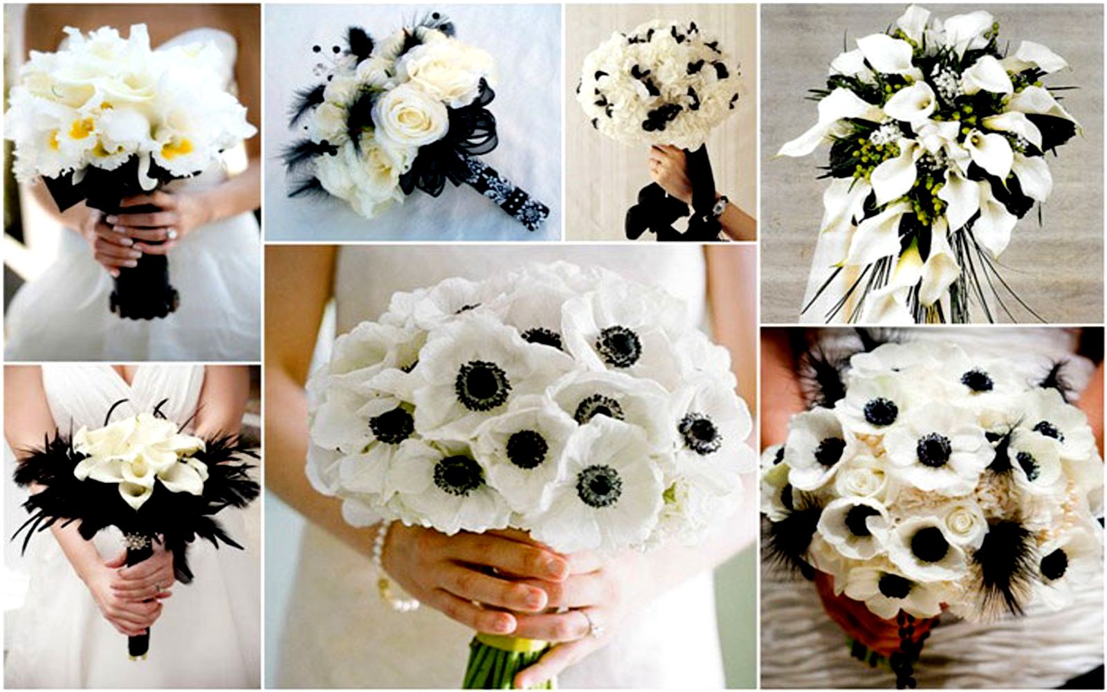 Black and white wedding bouquets ideas images 2017 black and white wedding bouquets junglespirit Choice Image