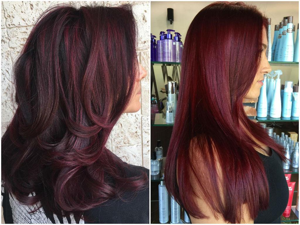 Burgundy plum hair dye dark brown hairs - The splendid transformation of a vineyard in burgundy ...